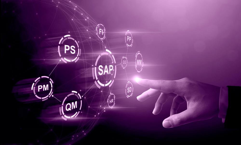Consultoría SAP, de Daya Plus